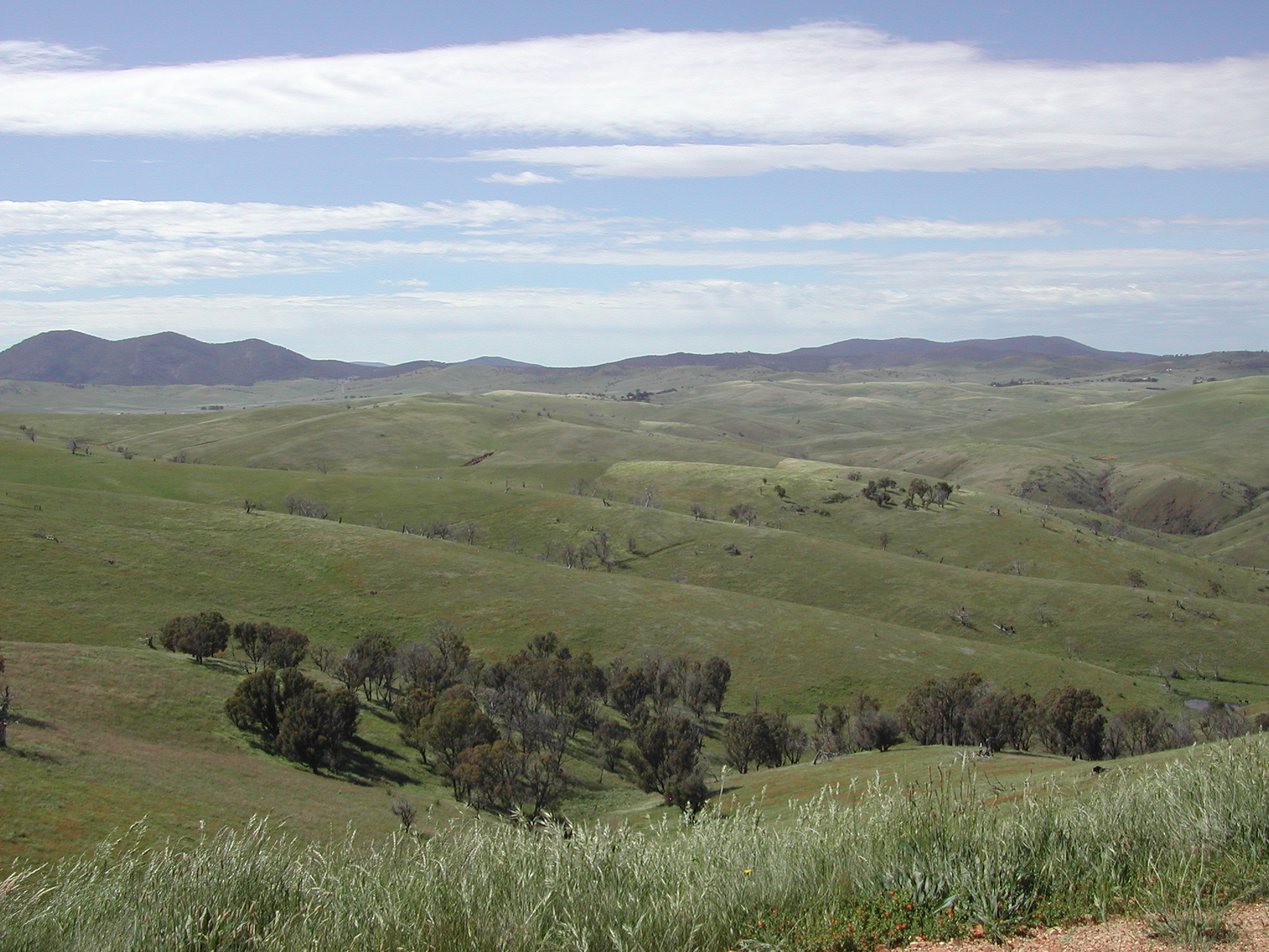 Rolling hills Gippsland, Victoria